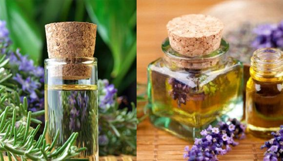 Rosemary and Lavender oil