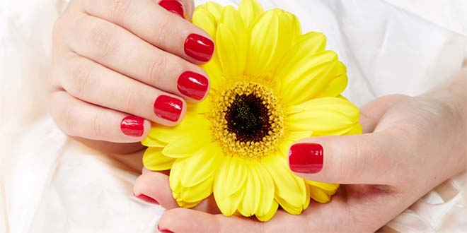 Beautiful Nail Arts and Images