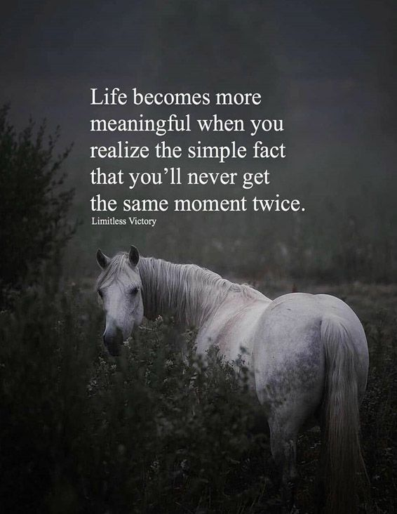 Life Becomes More Meaning Full when you - Best Life Quotes