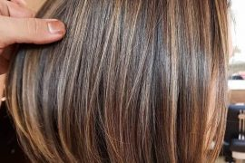Elegant Brown Hair Shades & Highlights for Short Hair